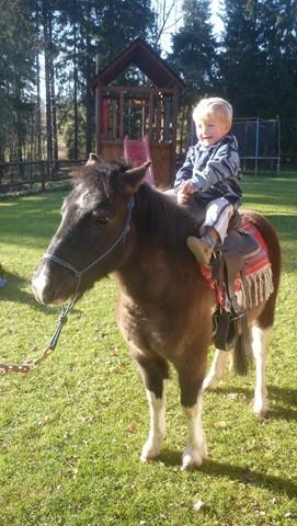 Můžete si vyzkoušet i jízdu na koni